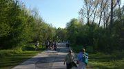 Zählen Fußgänger und Radfahrer? <br>Diskussion mit Bürgermeister Strobl über den Ausbau Rollfährestraße