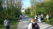 Verkehrszählung in Melk:  Zu 76 % Fußgänger- und Radverkehr auf der Rollfährestraße