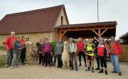 Radtour Alpakas in Traunfeld am 20.10.2018