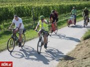 Radausflug nach Krems-Süd: viele Mitradelnde für bessere Radverbindung <br>NÖN Bericht