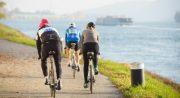 Radfahren entlang der Donau <br>viadonau schafft Verbesserungen für den Radverkehr
