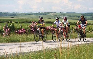 06.07.2019 <br>Klima-Radtour – WindRadTour nach Wolkersdorf im Weinviertel